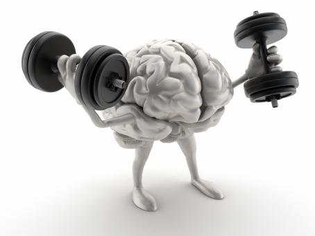 Picture of brain with weights